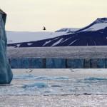 Gletchere fra Arktis